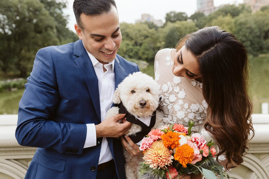 bow bridge central park elopement by NYC elopement photographer Sarah Sayeed